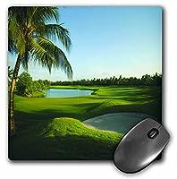 3drose LLC 8x 8x 0.25インチのマウスパッド、ゴルフコースタイMP 80826_ 1)