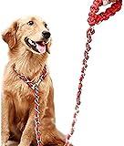 Rant Bell 中型犬 大型犬 用 リード 首輪 チェーン 丈夫 で おしゃれ 【 取扱い説明書付き 】 【 トイレ に流せる エチケット袋付 】 赤 XL
