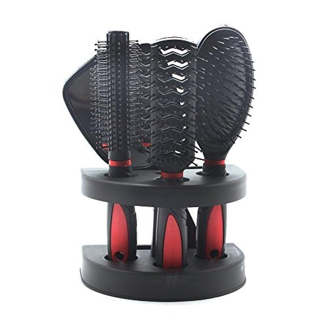 ストライプ区画五SelfTek 5Pcs Hair Comb Set Women Ladies Hair Care Massage Brush with Mirror and Holder [並行輸入品]