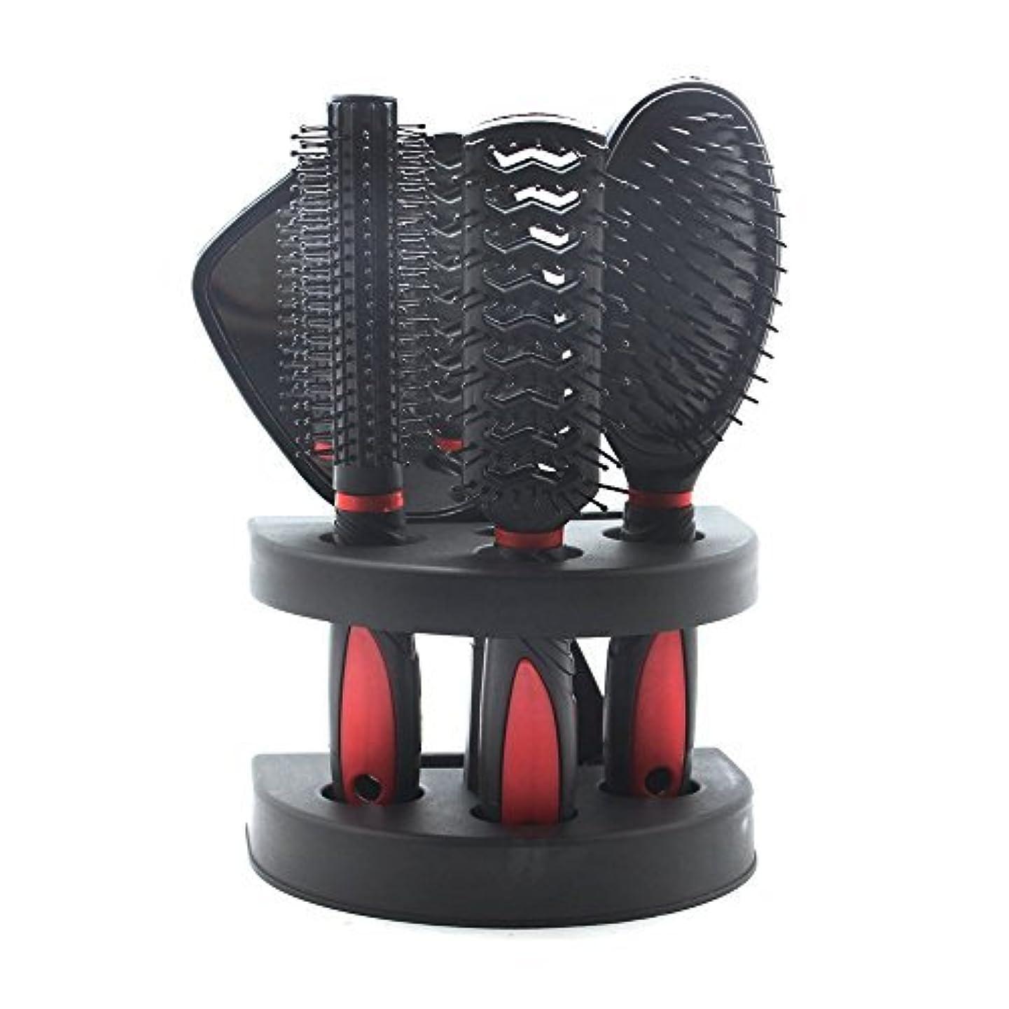 インディカスキー武装解除SelfTek 5Pcs Hair Comb Set Women Ladies Hair Care Massage Brush with Mirror and Holder [並行輸入品]