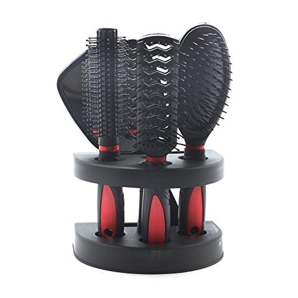お酢和断言するSelfTek 5Pcs Hair Comb Set Women Ladies Hair Care Massage Brush with Mirror and Holder [並行輸入品]