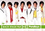 Pure Boys Back Stage File #3 [DVD]