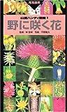野に咲く花 (山渓ハンディ図鑑)