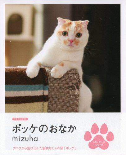ポッケのおなか (ブログbook)