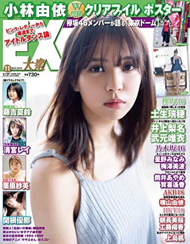 EX (イーエックス) 大衆 2019年11月号 [雑誌]