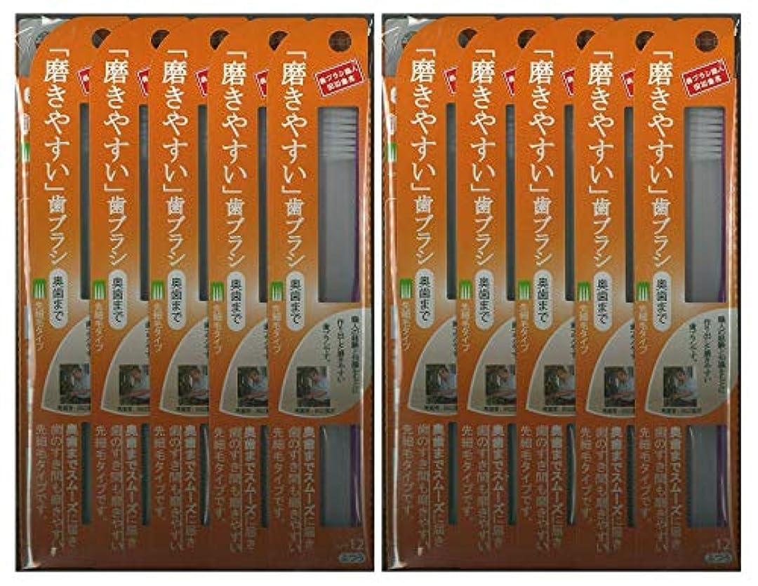 ロッジロビー年次歯ブラシ職人 田辺重吉考案 磨きやすい歯ブラシ ふつう (奥歯まで)先細 LT-12 1本入×24本セット