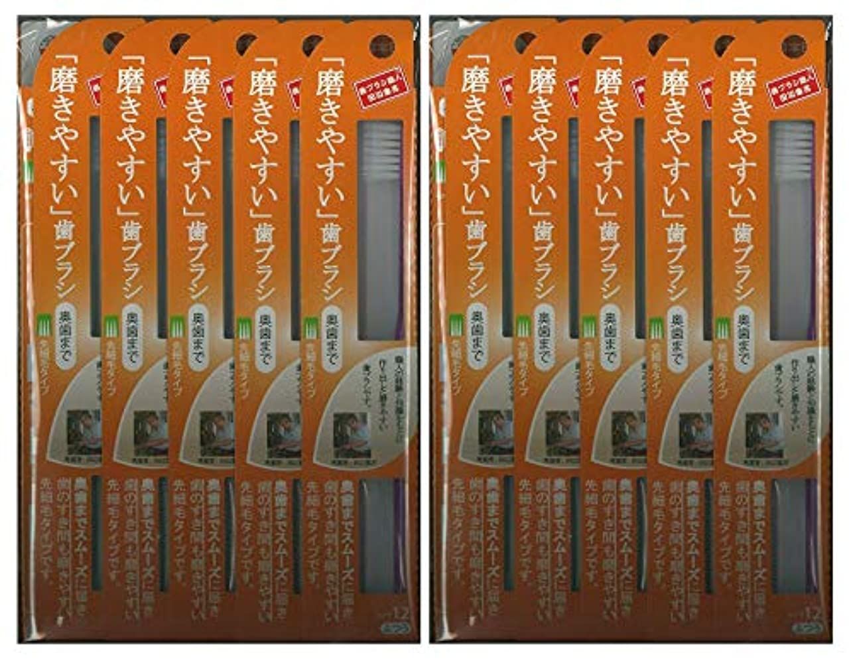 トチの実の木盟主限りなく歯ブラシ職人 田辺重吉考案 磨きやすい歯ブラシ ふつう (奥歯まで)先細 LT-12 1本入×24本セット
