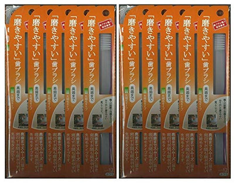 大理石高潔なボトル歯ブラシ職人 田辺重吉考案 磨きやすい歯ブラシ ふつう (奥歯まで)先細 LT-12 1本入×24本セット