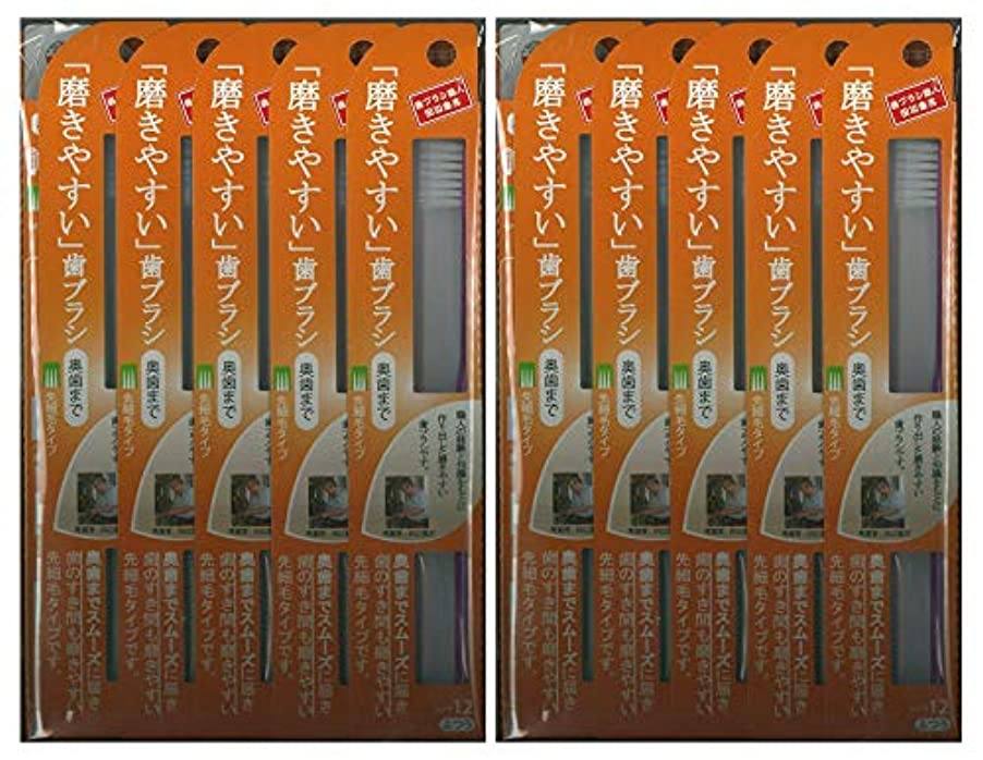 テロ昆虫インカ帝国歯ブラシ職人 田辺重吉考案 磨きやすい歯ブラシ ふつう (奥歯まで)先細 LT-12 1本入×24本セット