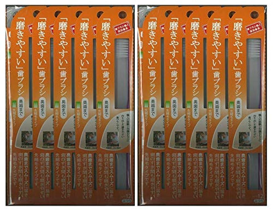 上庭園卑しい歯ブラシ職人 田辺重吉考案 磨きやすい歯ブラシ ふつう (奥歯まで)先細 LT-12 1本入×24本セット