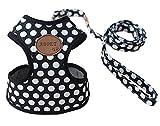Rant Bell(ラント ベル) 小型犬 ハーネス リード セット ドット柄 かわいい 肉球 (黒 S)