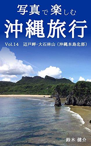 写真で楽しむ沖縄旅行 Vol.14 辺戸岬・大石林山 (沖縄本島北部)