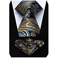 HISDERN Paisley Ties for Men Wedding Silk Tie + Handkerchief Wedding Necktie & Pocket Square Set