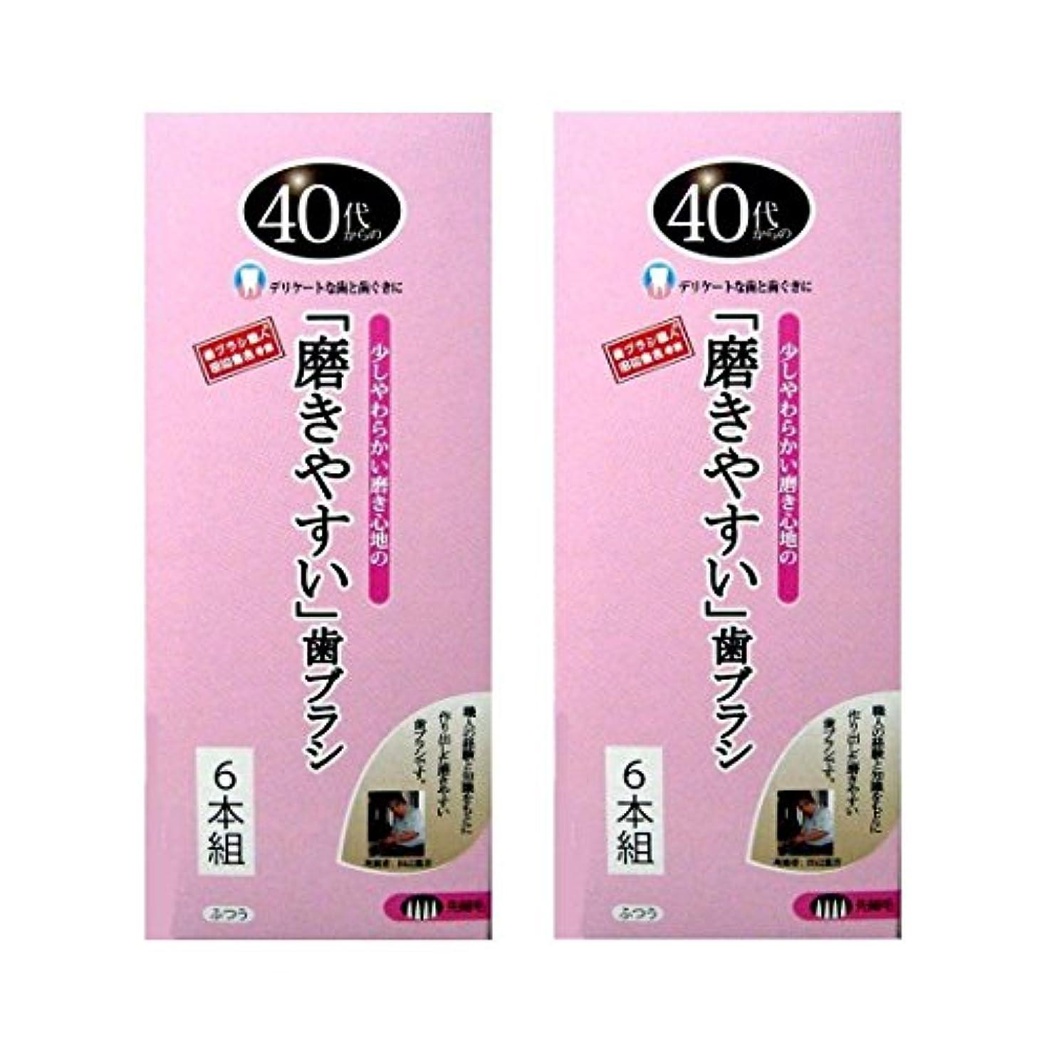 途方もないヘッジ用心歯ブラシ職人 Artooth ® 田辺重吉の磨きやすい 40代からの歯ブラシ 歯ぐきにやさしい 細めの毛 先細毛 日本製 12本セットLT-15-12