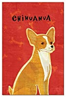 Tree-Free Greetings Eco-Notes Notecard Set 4 x 6 Inches 12-count Notecards with Envelopes Red Chihuahua (65053) [並行輸入品]