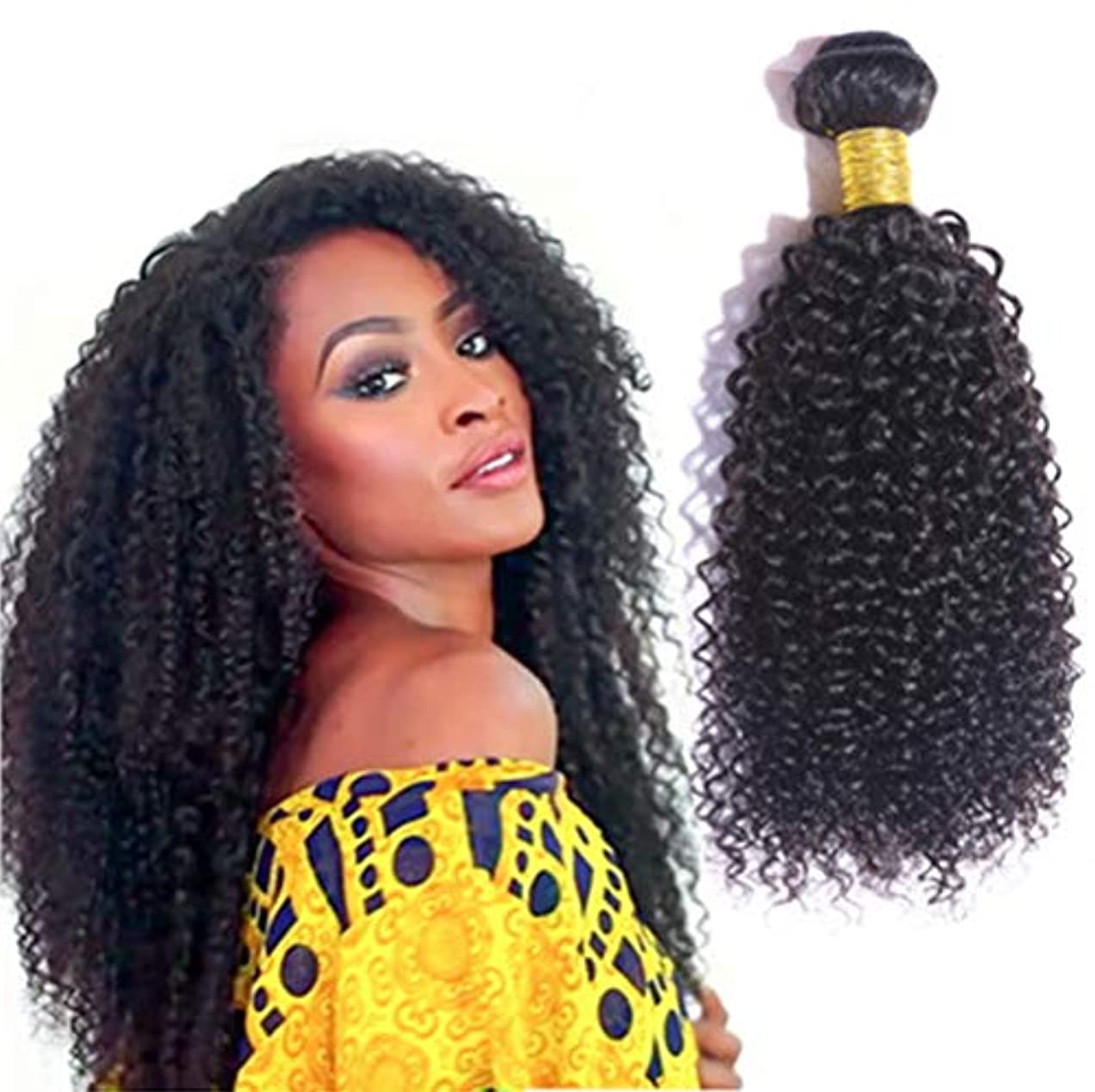 めまいゴミ住人女性ブラジル水波ヘアバンドル100%未処理のバージンレミー人間の毛髪延長3バンドル変態カーリーヘア織り