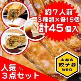 宇都宮餃子会正会員 宇都宮餃子さつき 食べ比べ 人気3点セット 【45個入】