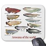 世界のアロワナのマウスパッド:フォトパッド*( 世界の熱帯魚シリーズ )