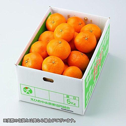みかん 甘平 かんぺい 風のいたずら 訳あり 大きさおまかせ 約5kg 愛媛県産 カンペイ 蜜柑 ミカン バレンタイン ギフト 贈り物