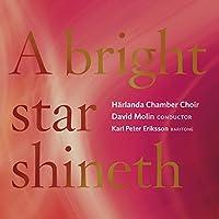 Bright Star Shineth