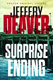 Surprise Ending (Kindle Single) (English Edition)
