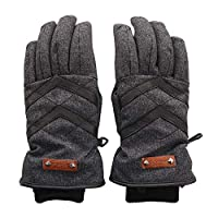フェニックス(フェニックス) DELTA Combi. Leather W's (チャコールグレー/S/Lady's)