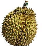 タイ産 フレッシュドリアン 2.5kg (±0.2kg) タイ フルーツ 直送