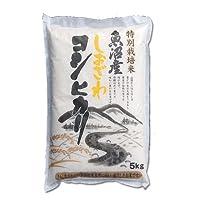 CONCENT・≪南魚沼産≫しおざわ コシヒカリ 「特別栽培減農薬米」 5kg
