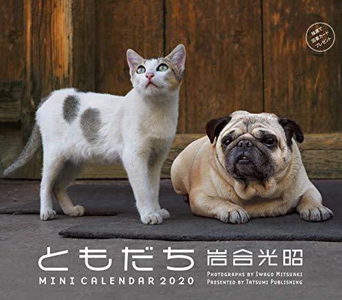 2020ミニカレンダー 岩合光昭 ともだち ([カレンダー])