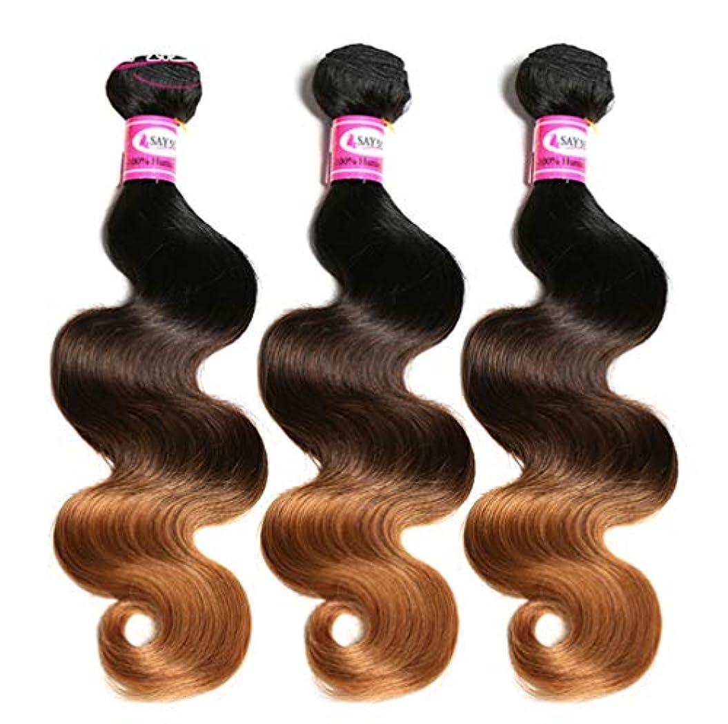 パースブラックボロウ割り当てる反応する100%ブラジル人毛束ボディウェーブ毛束オンブル人毛束織りグラデーション(3束)