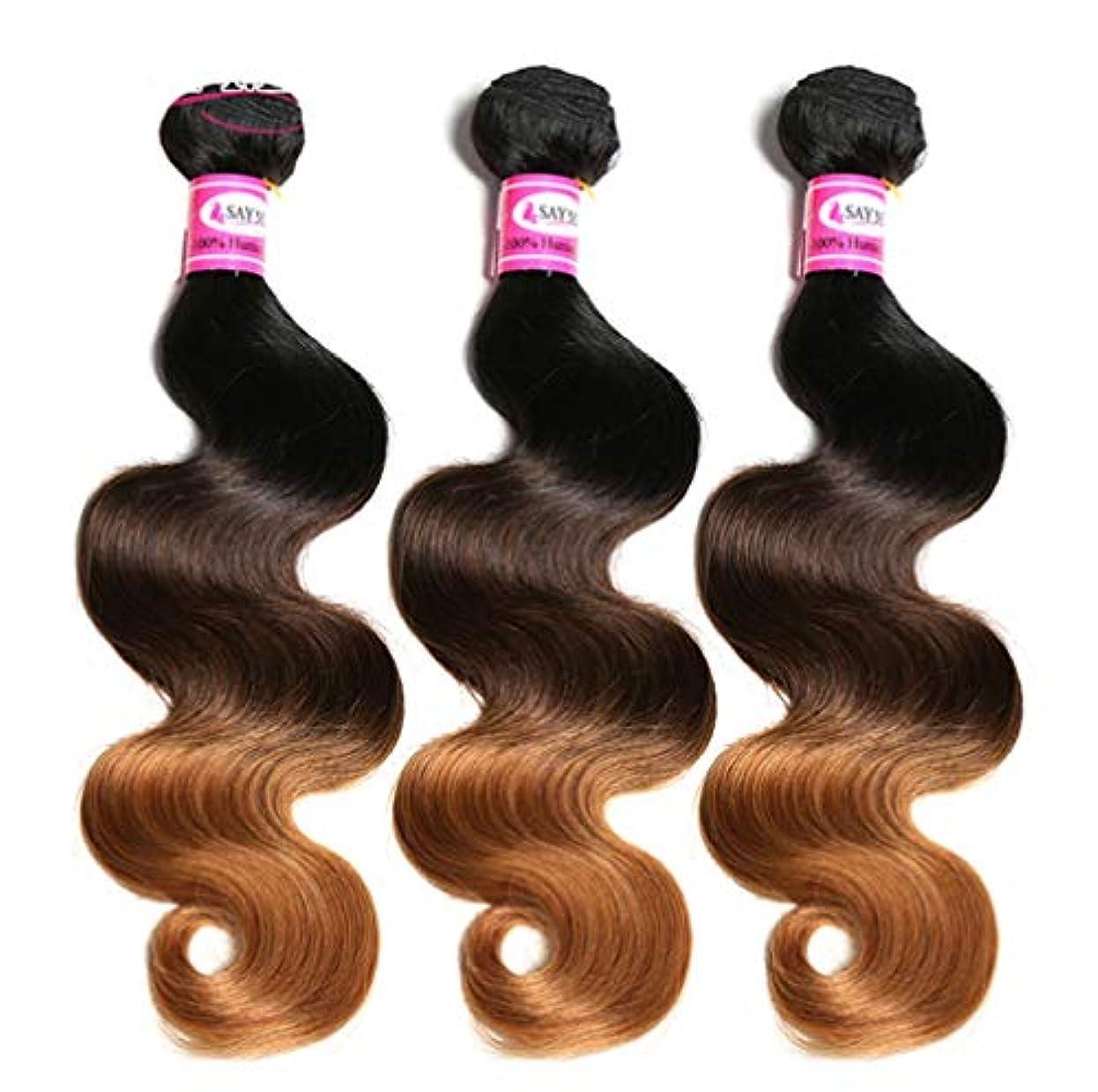 賃金鳴り響く魅力的100%ブラジル人毛束ボディウェーブ毛束オンブル人毛束織りグラデーション(3束)