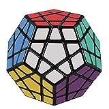 FAVNIC メガミンクス 立体パズル 脳トレ おもちゃ (メガミンクス 3x3x3)