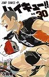 ハイキュー!! コミック 1-30巻 セット