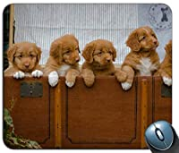 ラボラブラドールレトリーバー犬動物コンピューターPCマウスパッドマットマウスパッドNew!