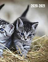 """Weekly and Monthly Planner 2020-2021: With Notes To Do Organizer Schedule Agenda / Cute Adorable Meowing Cat Kitty Pet Animal Lover / New Year Notebook and Diary to Write In / 134 Pages / 8.5""""x11"""""""
