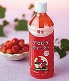 財宝 沖縄県産 アセロラ ジュース 500ml×24本