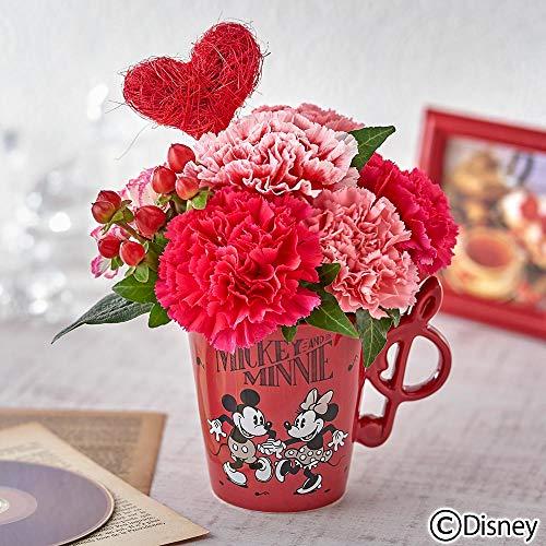 日比谷花壇 母の日 ディズニー カーネーション アレンジメント「ミッキー&ミニー クレ・ドゥ・ソル」 2019年 母の日カード付き