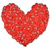 紙吹雪 ハート紙吹雪 ハートシャワー 赤 ハート形 華やかな演出 布製 バレンタインデー/婚式/パーティー/テーブル/DIY/撮影用/部屋飾り/イベントの装飾 壁飾り カード作り