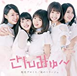 桜色プロミス/風のミラージュ TYPE-A(DVD付)