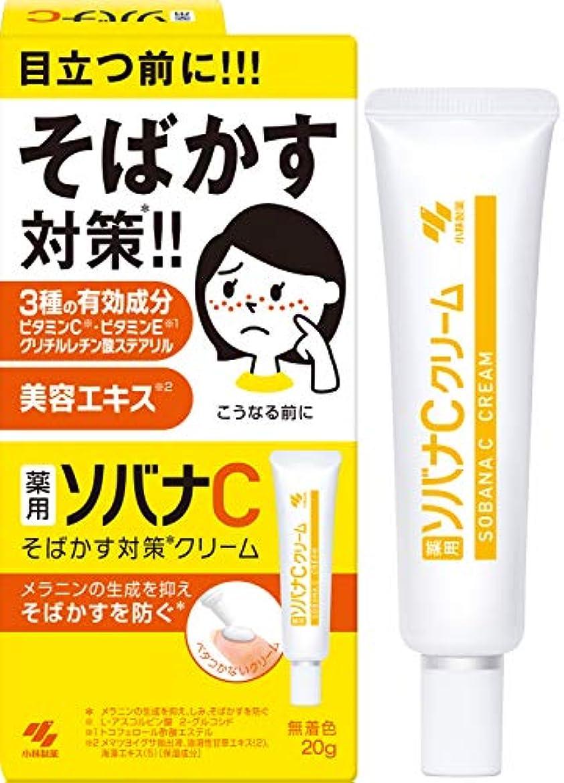 正しい洋服ポンプ小林製薬 薬用 ソバナCクリーム 20g 【医薬部外品】