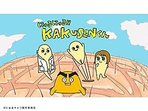 にゅるにゅる!!KAKUSENくん DVD