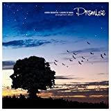 聖剣伝説 LEGEND OF MANA Arrangement Album -Promise-