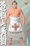 大相撲カード 1999年上半期版 BBM 蒼樹山秀樹<33> 時津風部屋