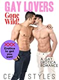 Gay Lovers Gone Wild!: Gay Romance (MM, Gay Erotica, First Time Gay, Bisexual Romance, Short Story Book 1) (English Edition)