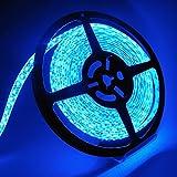 在庫一掃 【LC社製品】 LEDテープ5m 600SMD(青/ブルー) ベース(ホワイト) 防水&正面発光&3M強力