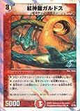 デュエルマスターズ DMC36-021UC 《紅神龍ガルドス》