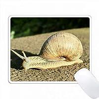カタツムリのイメージ。 PC Mouse Pad パソコン マウスパッド