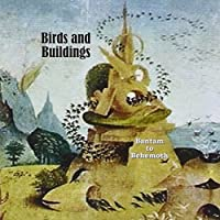 Bantam to Behemoth by Birds and Buildings (2013-05-03)