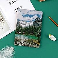 個性的 IPad Pro 11 ケース(2018秋新型モデル) 高級PUレザー製 オートスリープ機能 ペンのペアリングと全面保護 傷つけ防止 手帳型 2018秋発売のiPad Pro 11に対応 スマートカバーカナダ大原湖ヨーホー国立公園と山々自然風景アート写真