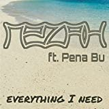 Everything I Need (feat. Pena Bu)